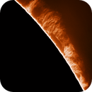Massive Proms on the Sun Today (Animation),                                Chuck's Astrophotography