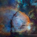 Fish Head Nebula Starless Hubble Palette,                                Eric Coles (coles44)
