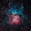 Trifid Nebula,                                Alfred Leitgeb
