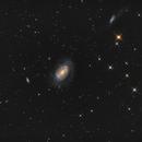 NGC 4725, NGC 4712, NGC 4747 (Coma Berenices),                                Antonio F. Sánchez