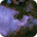 NGC7000 North American Nebula,                                Jaysastrobin