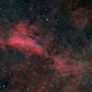 IC1318 A - Dusty Cygnus Region near Sadr in HaSIIRGB,                                Jens Zippel