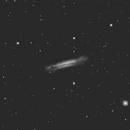 NGC 3628 Hamburger Galaxy,                                dennis1951