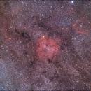 Complesso nebulare IC1397,                                fusetti