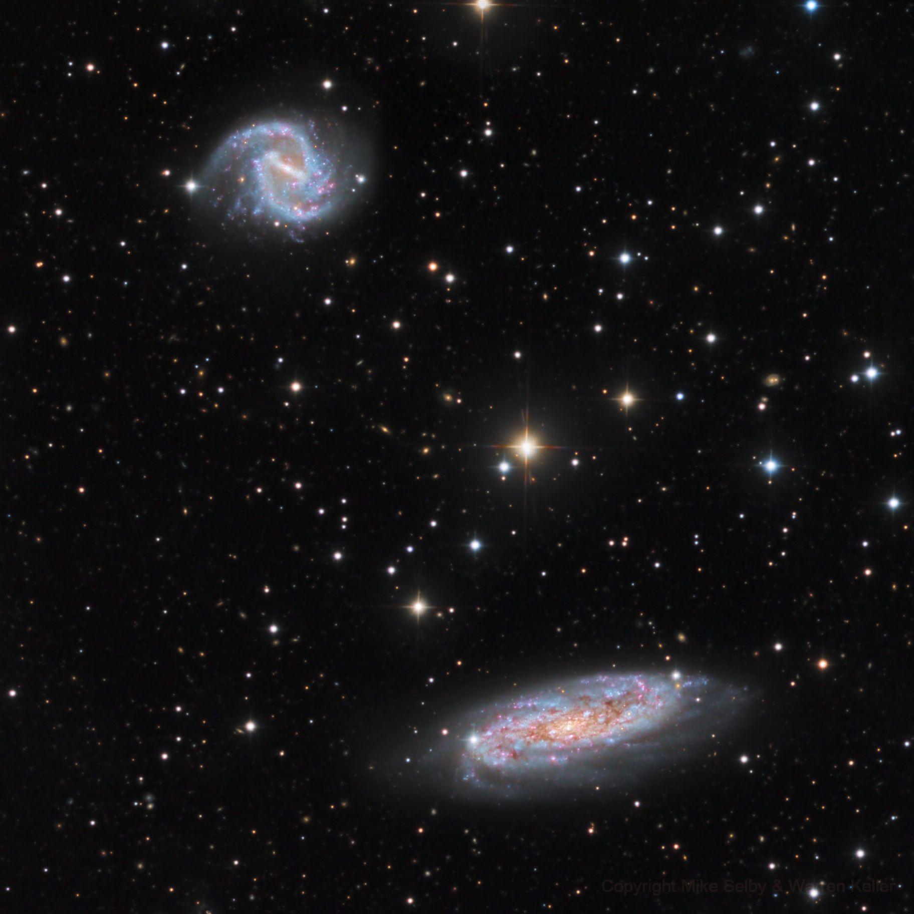 NGC 3511 and 3513,                                Warren A. Keller