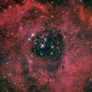 NGC 2237 Rosetta Nebula + Open Cluster NGC 2244,                                Thomas Westphal