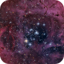The Rosette Nebula Core,                                Manfred Fellner