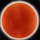 SunHa-1125UT-080315,                                Roberto Botero
