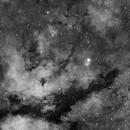 IC1318, Gamma Cyg Nebula,                                J. Norris