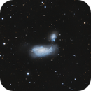 NGC 4490 with C11,                                Riedl Rudolf