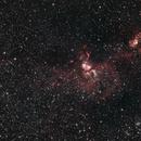 The Statue of Liberty Nebula (NGC3576),                                Matt Balkham