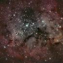 IC1396 amas ouvert et la Trompe d'Eléphant,                                Didier SPREUTELS