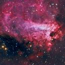M17 - Omega Nebula,                                Ken Kattner