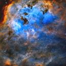 IC410 - Cosmic Swimmers,                                Jason Wiscovitch