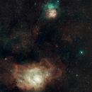 M8 and M20 (Lagoon and Trifid Nebulae),                                Douglas Thomas
