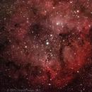 IC 1396,                                Hals