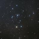 Rosette Nebula 01/31/21,                                James E. Jamison