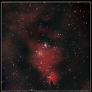 Cone Nebula - NGC 2264,                                Sid Frede