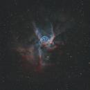 Thor's Helmet (NGC 2359),                                pete_xl