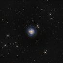NGC 3344  (Leo Minor)..an special Spiral galaxy,                                Antonio F. Sánchez