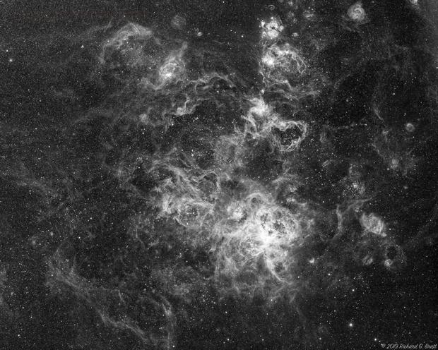 NGC2070 - Tarantula Nebula in Ha,                                Richard Bratt