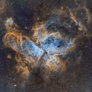 NGC 3372 Eta Carinae Nebula,                                Emilio Castillo