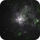 NGC 2070 Bi-Colour Narrowband ,                                Chris85