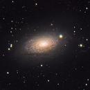 M63,                                AstroBadger