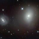 MESSIER 85 - M85 - NGC4394,                                Fran Jackson