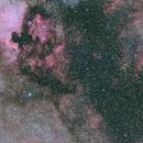Cygnus Region,                                Erlend Langsrud