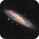M98 - Intermediate Spiral Galaxy in Coma Berenices,                                Dhaval Brahmbhatt