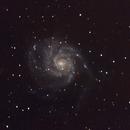 M101,                                Josh Woodward