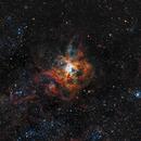 Tarantula Nebula,                                Roger Gifkins
