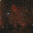 Pelican Nebula,                                t-ara-fan
