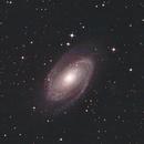 M81,                                Eric Horton