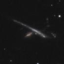 UGC 10273 Galaxy Group,                                Gary Imm