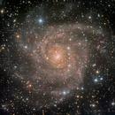 IC 342 HaLRGB,                                Eric Coles (coles44)