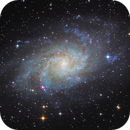 Messier 33 (The Triangulum Galaxy),                                Thomas Richter