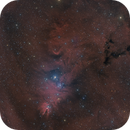 NGC2264,                                SkyEyE Observatory