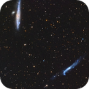 NGC 4631 Whale Galaxy - NGC 4656 Crowbar Galaxy,                                Jerry Macon