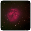 Cocoon Nebula - IC 5146,                                Sid Frede
