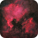 NGC 7000 & IC 5070 - The North America Nebula and Pelican Nebula in HaRGB with a RedCat 51 1x,                                CrestwoodSky