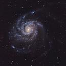 M101 Pinwheel Galaxy,                                hahaleung