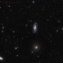 NGC 5033,                                Mike Miller