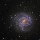 Southern Pinwheel Galaxy M83,                                AstroEdy