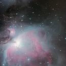 M42; M43,                                antares47110815