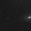 M81/82 Supernova,                                Stefan Muckenhuber