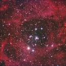 NGC 2239,                                Anton