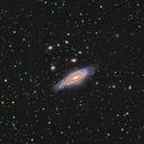 Deer Lick Group, C 30, NGC 7331 (Pegasus),                                Marko Emeršič