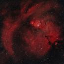 NGC 2264 Cone - NGC 2239 Rosette 20210212 20160s Ha-OIII 03.9.7,                                Allan Alaoui
